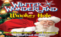 Winter Wonderland at Wookey Hole - 20th November 2020 – 3rd January 2021